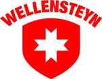 wellensteyn-logo